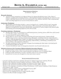veterinary resume