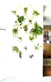 plant wall hangers hanger home depot indoor diy outdoor hanging hoo