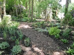 Small Picture Woodland Garden Design Garden Design Ideas