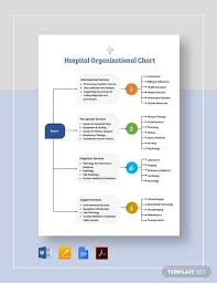 Sample Hospital Organizational Chart 9 Documents In Pdf