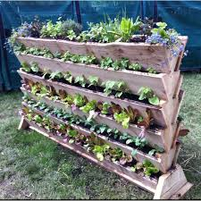 Small Picture 335 best Organic Garden images on Pinterest Organic gardening