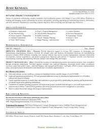 Good Software Project Manager Resume Examples Alluring Resume Sample