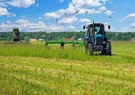 Αποτέλεσμα εικόνας για αγροτικεσ καλλιεργειες