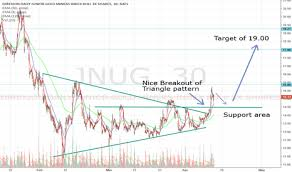 Jnug Stock Quote Extraordinary JNUG Stock Price And Chart TradingView