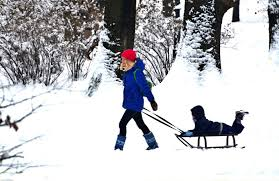 woman pulling a sled with a child on it through snow