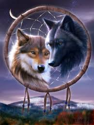 The Story Of Dream Catchers White Wolf The Legend of the Dreamcatcher 37