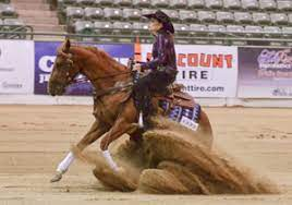 Tammy Hays & Miss Prize Maker Win NRCHA Snaffle Bit Futurity Non-Pro  Preliminary Rein Work - Quarter Horse News