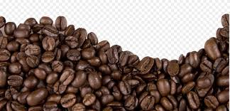 coffee beans png. Brilliant Png Coffee Bean Cafe Espresso Frijoles Negros And Beans Png N