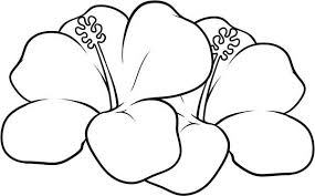 Small Picture Tropical Flower Coloring Pages Flower Coloring Page Tropical