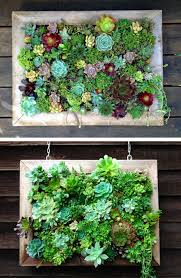 Vertical Garden Design Ideas Custom Inspiration