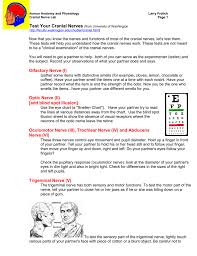 Cranial Nerve Testing And Trigeminal Handout