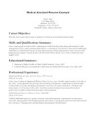Summary On Resume Resume Summary Of Qualifications Example Resume Extraordinary Qualification Summary Resume