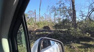 panic level hurricane michael s impact on florida georgia timber farms generational
