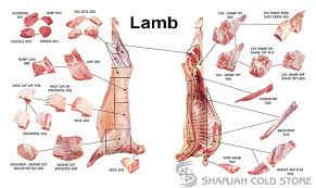 Cuts Of Lamb Chart Lamb Mutton Cuts Sharjah Cold Store