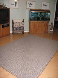 Carpet Paint Lowes