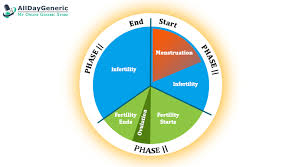 Menstrual Cycle Phases Chart Menstrual Cycle Stages Get To Know 4 Phases Of Women
