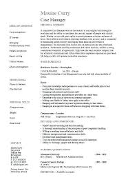 Example Of A Nursing Resume Example Of A Nursing Resume Example