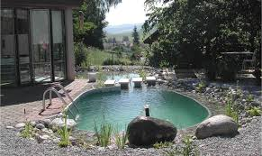 natural looking in ground pools. Plain Looking Photo Of Natural Pool In Texas For Natural Looking In Ground Pools