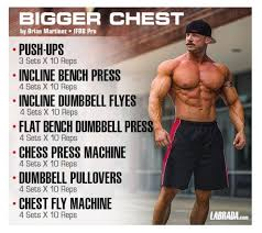 Arnold Gym Workout Chart Pin On Beast Mode