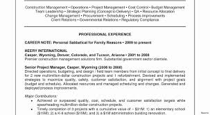 Bistrun Project Management Resume Examples New Project Manager