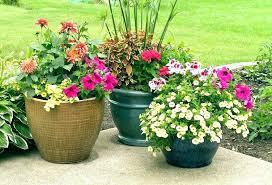 full size of home depot garden pots flower for winning herb det large