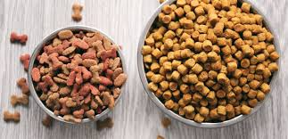 Everything You Need To Realize About Domestic pets Food