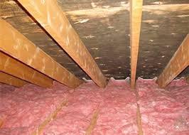 attic mold remediation cost. Interesting Remediation Attic Mold Remediation Process And Cost In Cleans