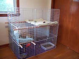 this idea is very creative and comfortable for the indoor rabbit they place their litter box in the bottom but then give the rabbit 2 sleeping areas which