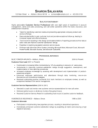 Professional Summary For Resume Sample Professional Summary For Customer Service Resume Copy 41