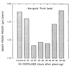 Greenhouse Floriculture Controlling Plant Height Without