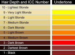 Pin By Lorie Chance On Hair Skin Nails Hair Color Wheel