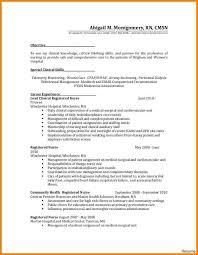 Nice Sample Nursing Resume In Nursing Cv Template Insrenterprises
