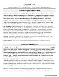 Unique Ideas Resume Writing Services Denver Resume Services Denver E