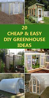 20 and easy diy greenhouse ideas
