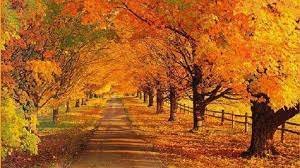 42+] Fall Landscapes Wallpaper on ...