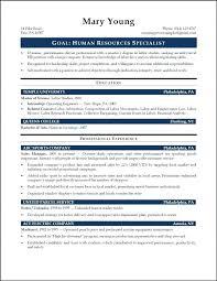 resume for nursing school application me resume for nursing school application valuable entry level resume 6 9 examples sample help human resource