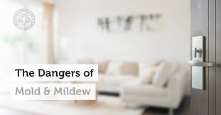 the dangers of mold and mildew in your home or office