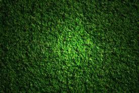 grass at night texture. Exellent Texture Grass Field At Night For At Night Texture O