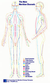 Acupuncture Chart Main Meridians Kootenay Columbia College