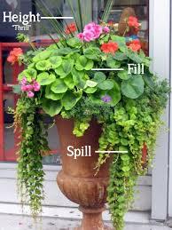 170 combination planters ideas