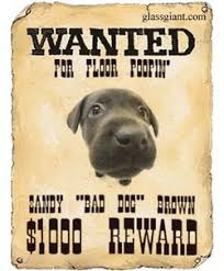 Wanted Poster Generator Make Your Own Old West Style Wanted Poster