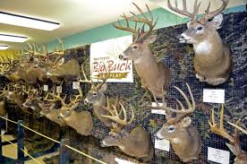 John McCoy: Are record-breaking bucks a thing of the past in WV? | Outdoor  Pursuits | wvgazettemail.com