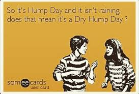 Funny Hump Day Quotes Extraordinary Happy Hump Day Meme Images And Pics