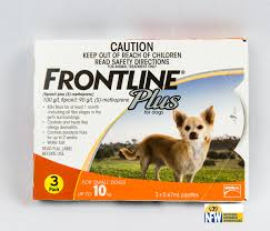 frontline for puppies. Frontline Plus Dog-Sml Up To 10kg For Puppies N