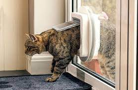 cat flap fitter swanea coastal glass