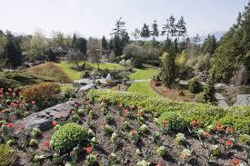flower beds in queen elizabeth park vancouver british columbia canada