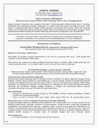 Resume Best Resume Templates For Professionals Resume Templates