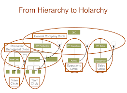 Holacracy Org Chart My Thoughts On Holacracy