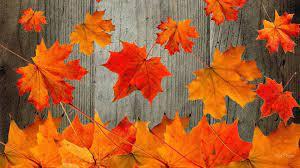 58+] Free Fall Wallpaper Desktop on ...