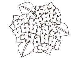 3つ咲いている紫陽花のぬりえ線画イラスト素材 イラスト無料